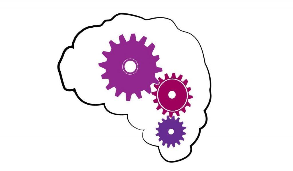 Hidrocefalia- Buen funcionamiento del cerebro