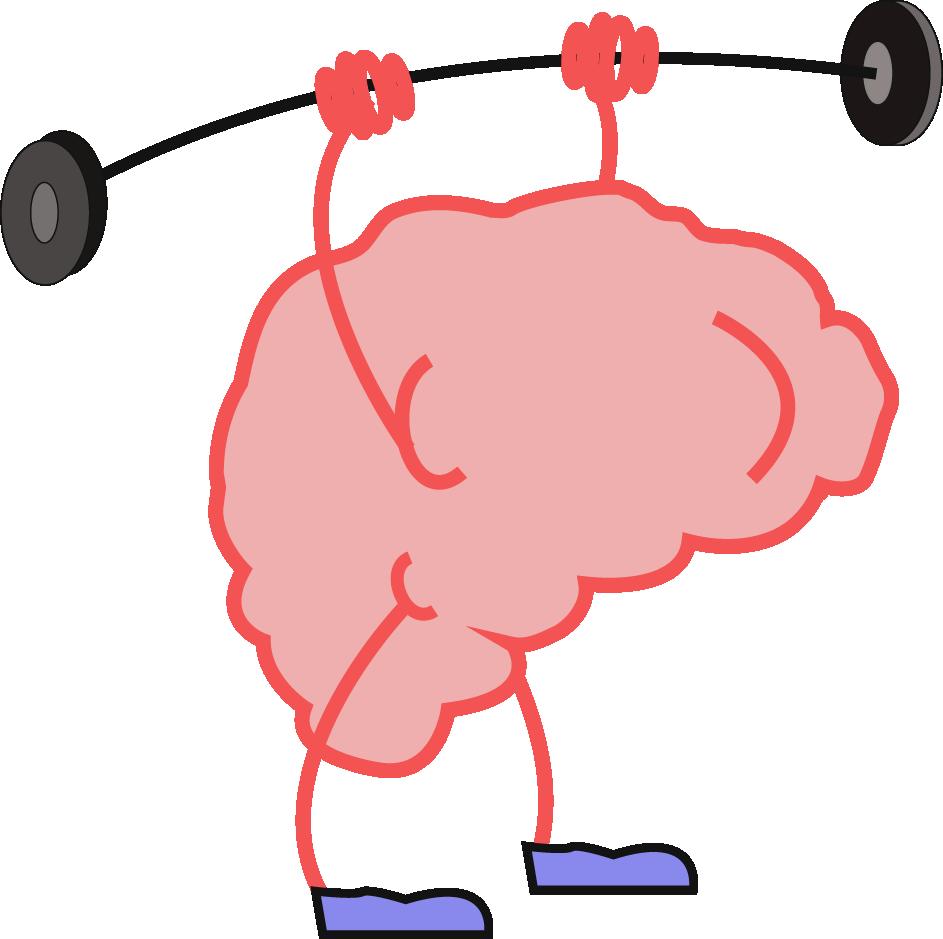 LCR fundamental en la conservación y buena salud del cerebro.