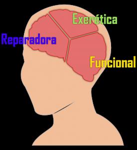 Cuales son los tipos De Neurocirugia