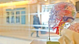 que es la neurocirugia